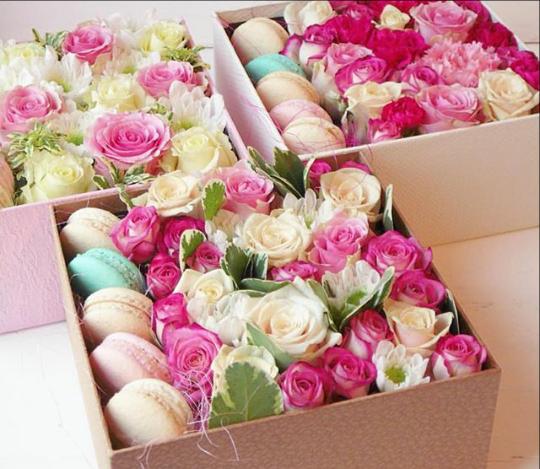 Курган надежда цветы